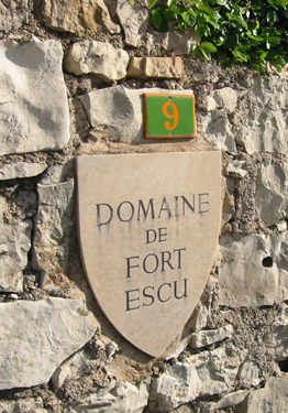 The famous shield Fort Escu - devised by Winifred