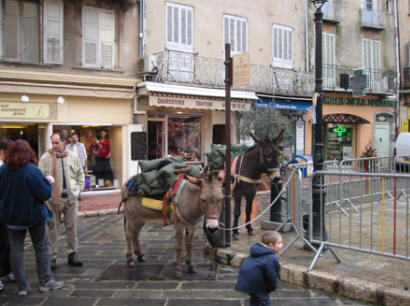 Donkey rides at Place aux Aires, Grasse